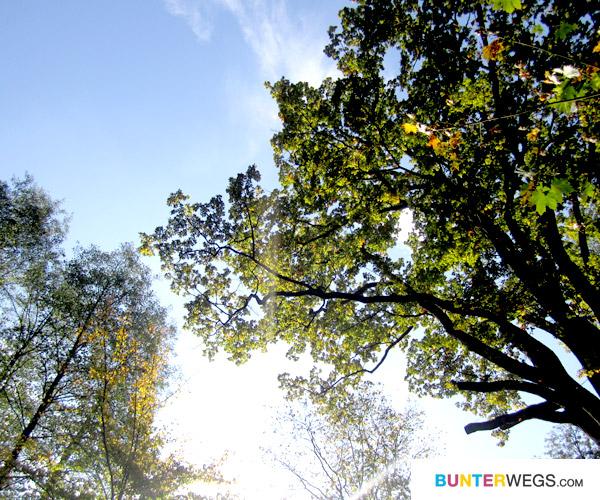 Wie wunderbar! Ich liebe blaue Himmel! * bunterwegs.com