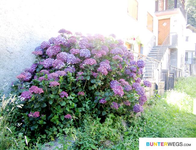 Unterwegs auf der Via Spluga * BUNTERwegs.com
