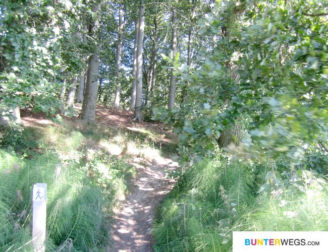 Das blaue Männchen begleitet uns den ganzen Weg entlang * BUNTERwegs.com