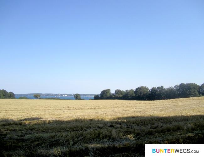 Und Felder * Dänemark * BUNTERwegs.com