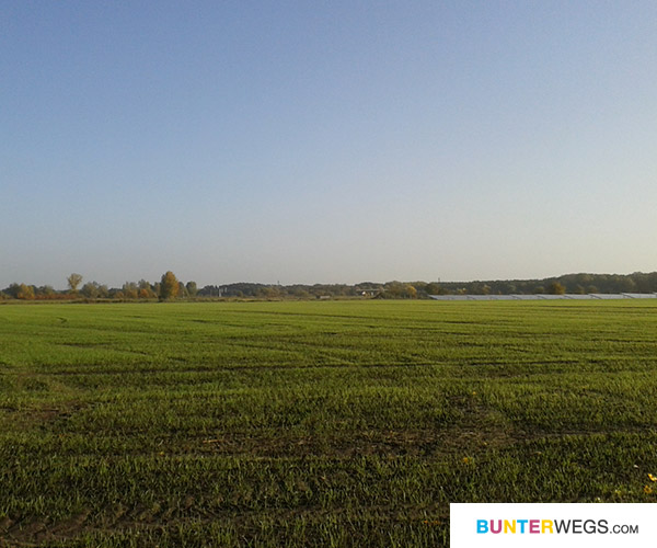 Auf dem Elbe-Rad-Weg