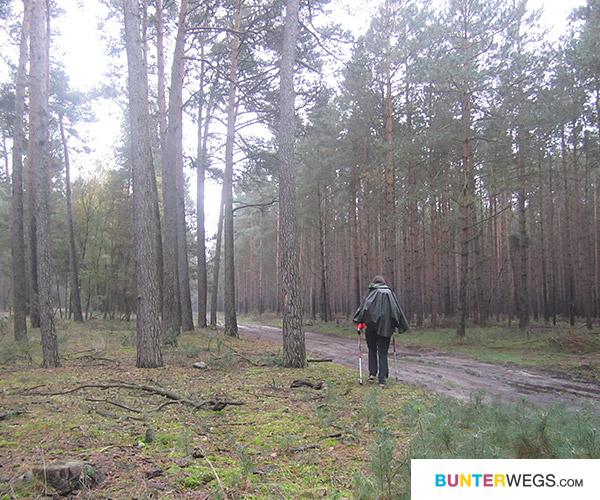 Winterfeld bis Meßdorf * BUNTERwegs.com