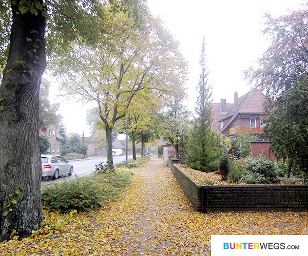 Von Uelzen nach Bergen (Dumme) * BUNTERwegs.com