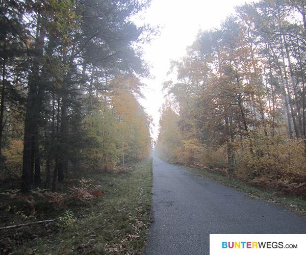Zwischen Annaburg und Falkenberg (Elster), Deutschland * BUNTERwegs
