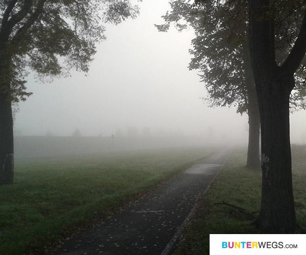 Von Bad Belzig aus Richtung Treuenbrietzen * BUNTERwegs.com