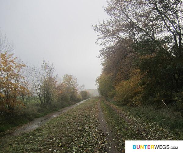 Fast in Elsterwerda, Deutschland * BUNTERwegs.com