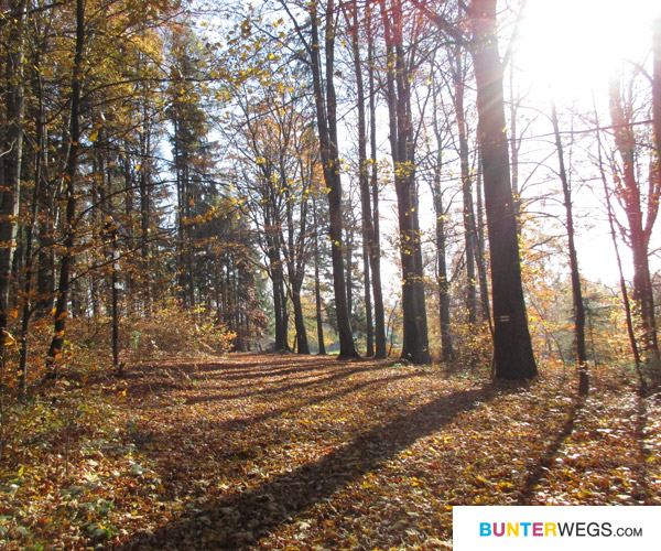 Der Herbst. Der Goldene * BUNTERwegs.com
