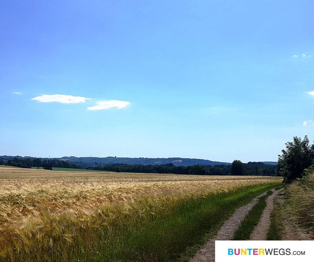 Unterwegs auf dem Baldeneysteig * BUNTERwegs.com Der Outdoor Blog und Abenteuer Reise Blog mit Liebe zum Wandern