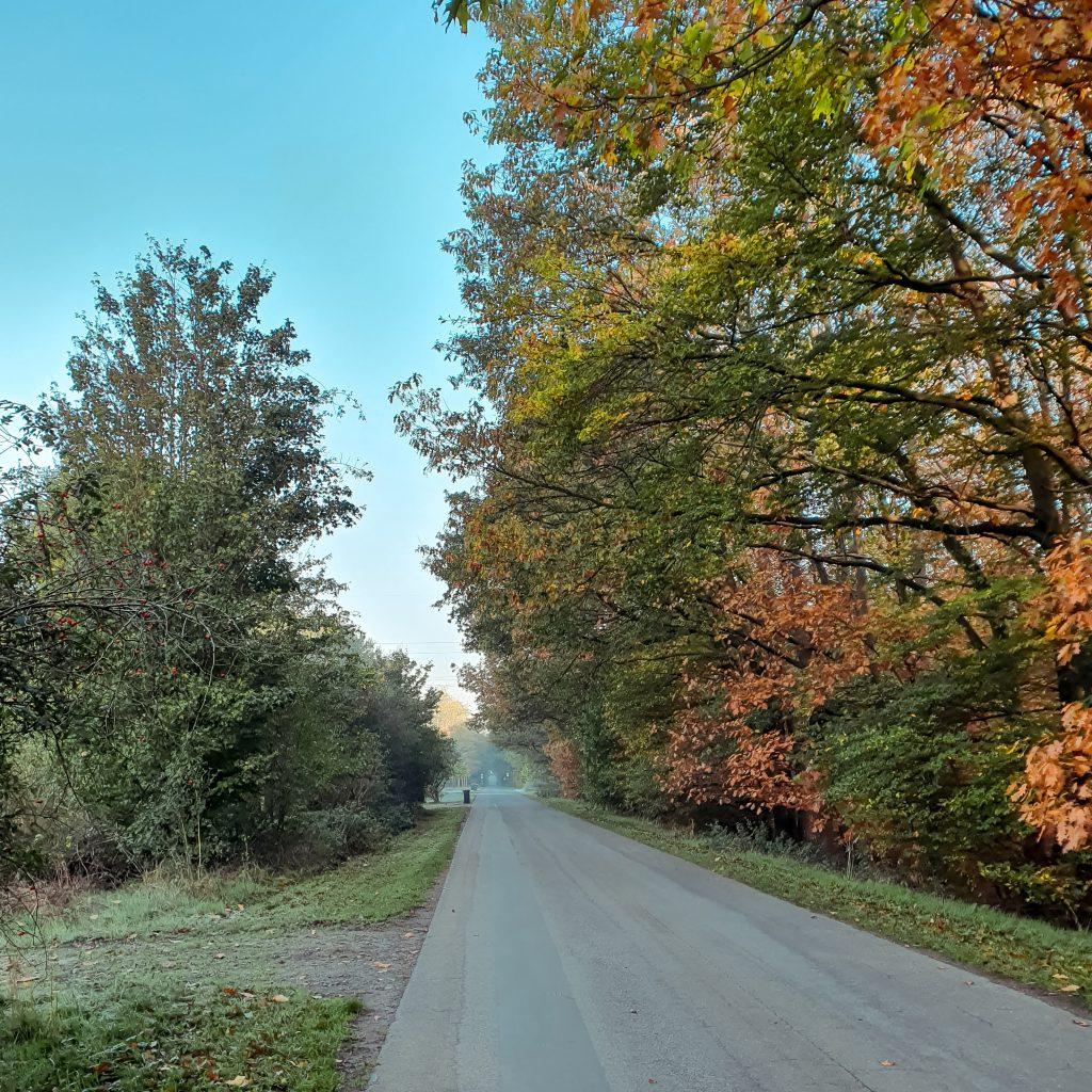 Hervester Bruch, Dorsten * BUNTERwegs. Der Outdoor Blog und Abenteuer Reise Blog mit Liebe zum Wandern