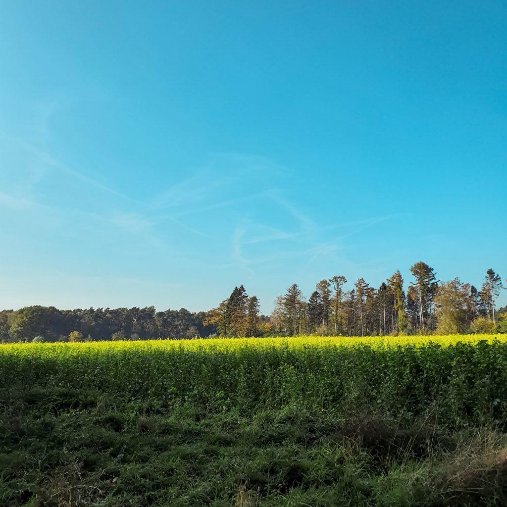 Zwischen Hohe Mark und Dorsten * BUNTERwegs. Der Outdoor Blog und Abenteuer Reise Blog mit Liebe zum Wandern